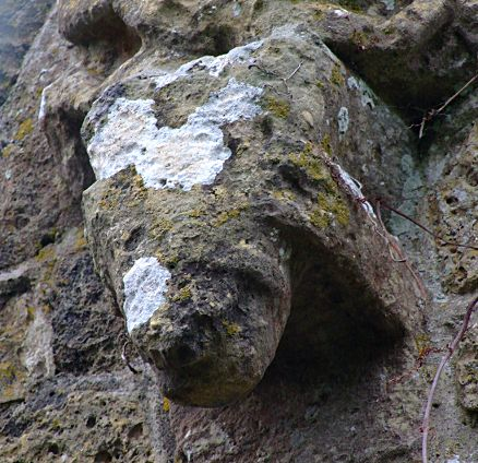 The Sheela sits on top of this worn beast head