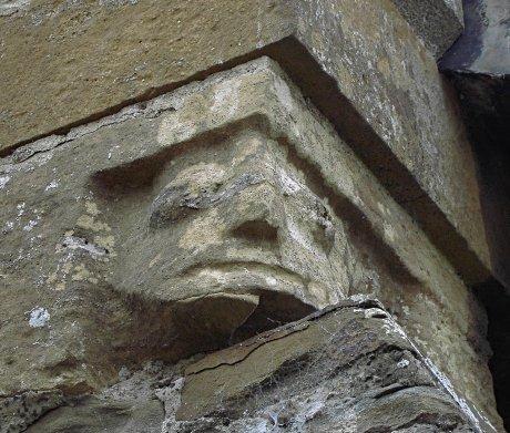 Bulbous Eyed Head